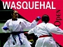International Open of Wasquehal