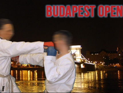 15th Budapest open 2012